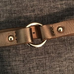 Ann Taylor Bronze Belt